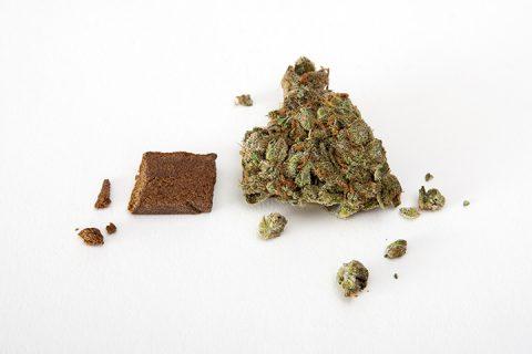 hasj wiet cannabis joint smoken blowen